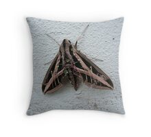 Sphinx Moth After Rain Throw Pillow