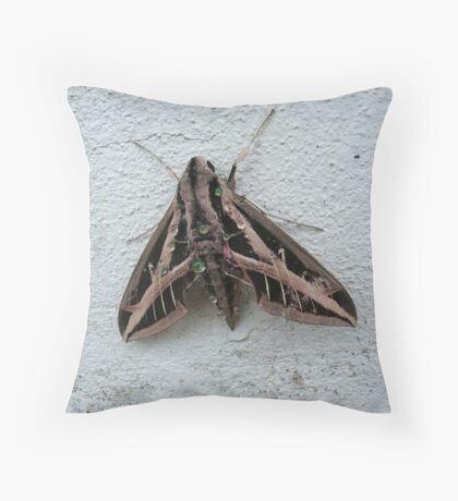 Sphinx Moth After Rain Throw Pillow