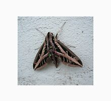 Sphinx Moth After Rain T-Shirt