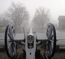 Cannon at Ross by Wendy Dyer