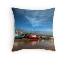 Low tide in bay of Fundy Throw Pillow