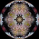 Dazzling Dahlias Ball by Matthew Walmsley-Sims