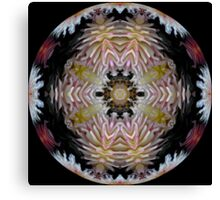 Dazzling Dahlias Ball Canvas Print