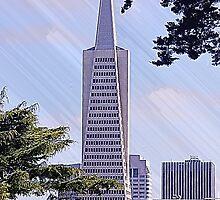 Transamerica Pyramid - San Francisco, CA by Doug Cargill