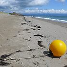 Yellow buoy on the tide line at Pwllheli ( Landscape) by Anna Myerscough