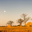 Moonrise at Sunset by Mieke Boynton