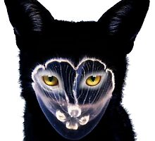 Galantis by Cowboy-Industry