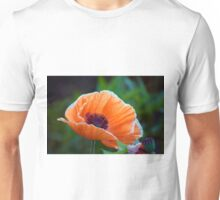 Longwood Gardens - Spring Series 119 Unisex T-Shirt