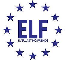 ELF - EVERLASTING FRIENDS SUJU Photographic Print