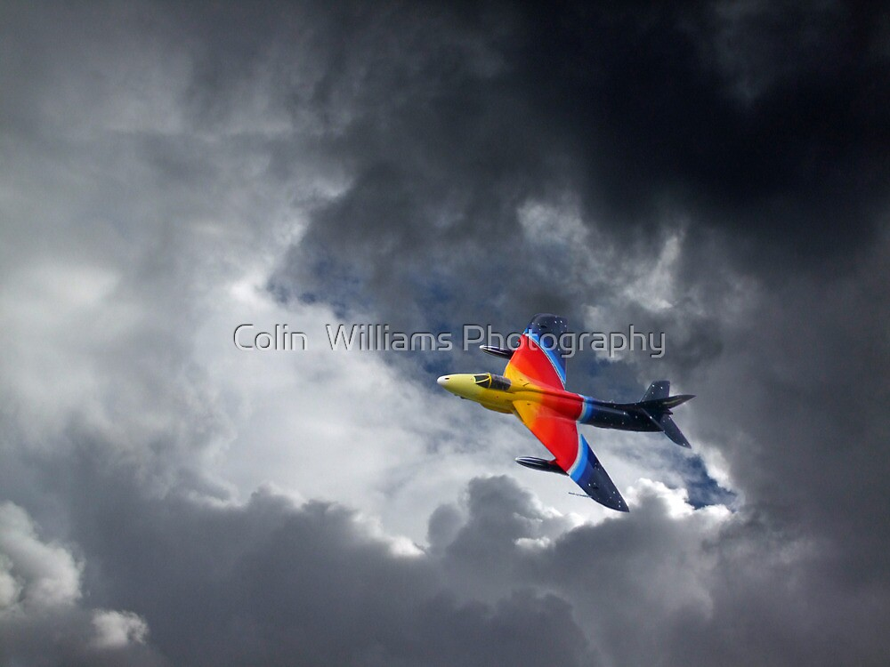 Moody Miss Demeanour by Colin  Williams Photography