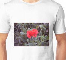 Longwood Gardens - Spring Series 121 Unisex T-Shirt