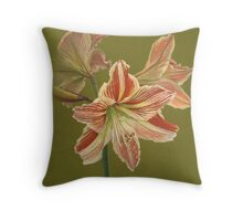 Prime of Life 1 Throw Pillow