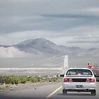 The long road to Las Vegas by Toby Wilson