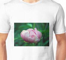 Longwood Gardens - Spring Series 123 Unisex T-Shirt