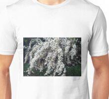 Longwood Gardens - Spring Series 126 Unisex T-Shirt