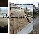Some Family Homes after Irene by Cathy Amendola