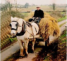 Bringing Home the Hay, Ireland. Photographic Print