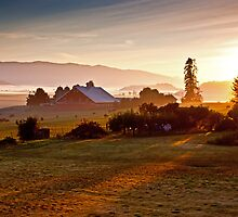Skagit Valley, early morning dew  by Mike  Kinney