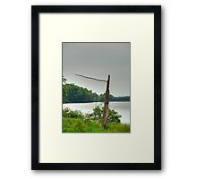 They Went That Way Framed Print