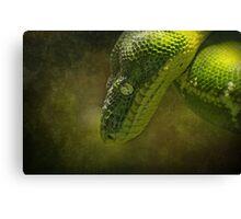 As Green as Green..... Canvas Print