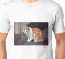 Longwood Gardens - Spring Series 133 Unisex T-Shirt