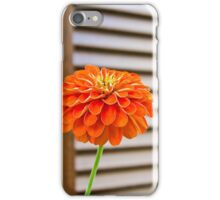 RED FLOWER WOODEN SHUTTERS iPhone Case/Skin