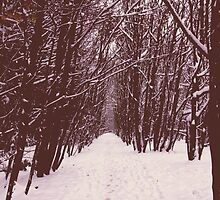 Snow in Nonsuch park  by Jadetang