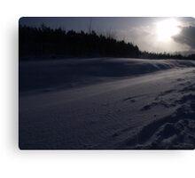 Snow Drift 2 Canvas Print