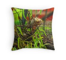 Fresh hatched heron in the tropical paradise - Garza nacido en este momento en el paraiso tropical Throw Pillow
