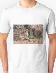 Dreamy Meerkat T-Shirt