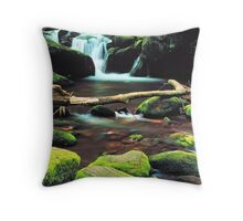 FALLS,ROARING FORK Throw Pillow