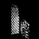 Window. III by Bluesrose