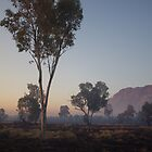 Smoky West Macdonnell Ranges by Linda Fury