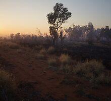 Sunrise through the Smoke by Linda Fury