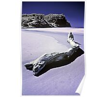 Hotwater beach Infrared Poster