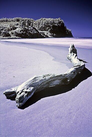 Hotwater beach Infrared by Paul Mercer