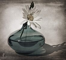 Daisy in a Aqua vase by marycarnahan