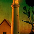 The Magic Lighthouse by Sarah Vernon