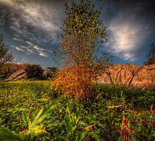 Autumn Closing by Bob Larson