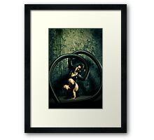 Black Widow 4 Framed Print