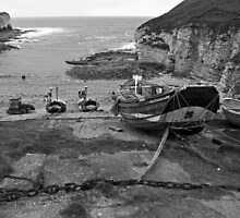 North Landing, Flamborough, East Yorkshire by Tom Bartle
