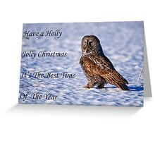 Christmas Card - Great Gray Owl Greeting Card