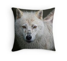 Portrait of an Arctic Wolf Throw Pillow