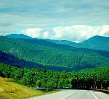 On Route to the Adirondacks by Diane  Kramer