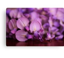 Wisteria On Top Of A Desk Canvas Print