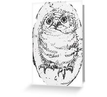 Owlet Greeting Card