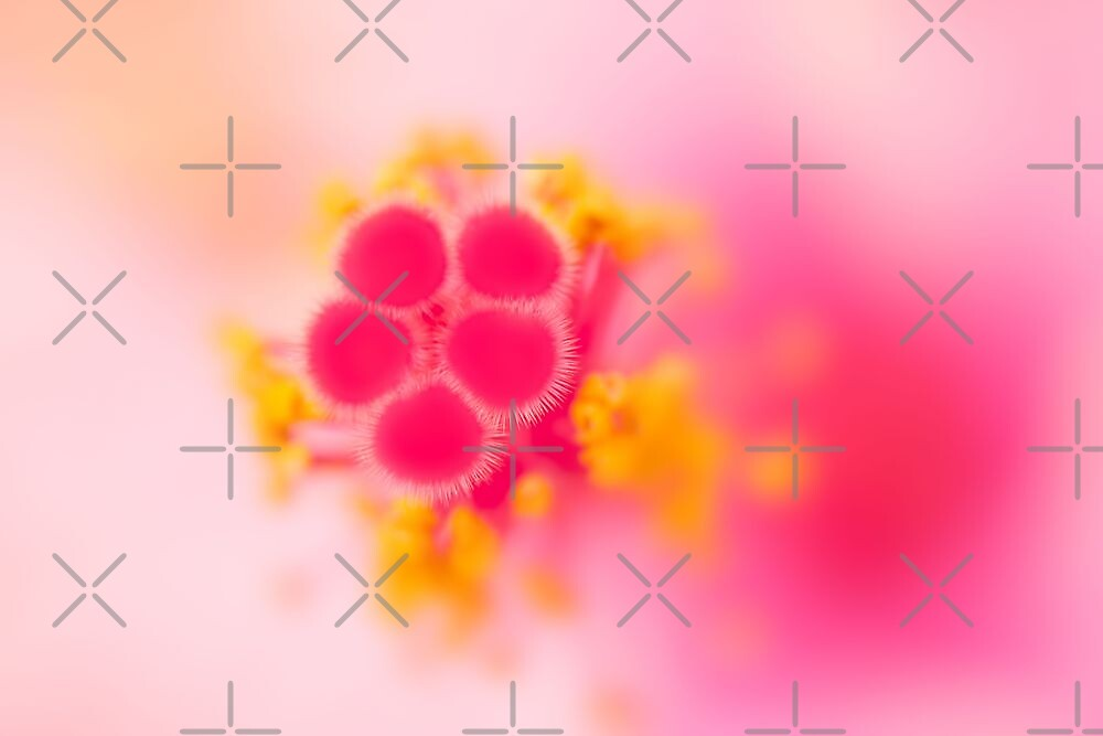 blush by Ingz