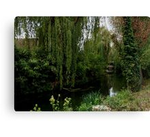 Water-scape 8 Canvas Print