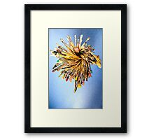 Is this the brush off? Framed Print
