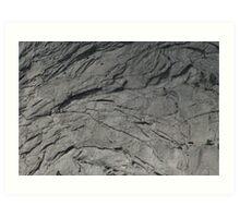 Gray Scale Art Print